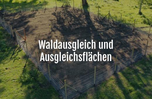 Servicio Compensación-Ambiental-alemán