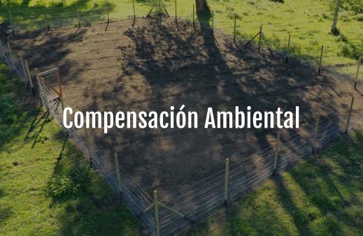Servicio-Compensación-Ambiental-v6