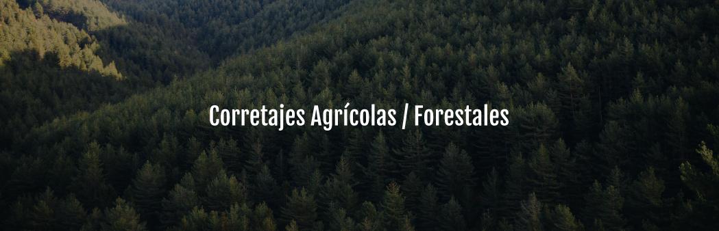 Servicio-Corretajes-Agrícolas-Forestales-móvil-v6